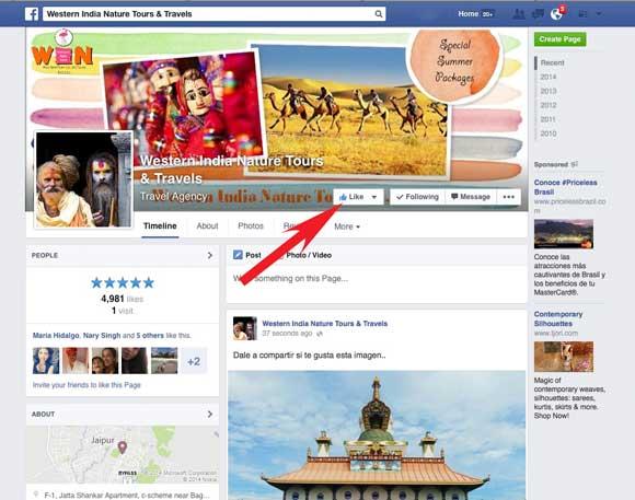 """Segundo Paso: Click en  """"Me Gusta"""" en la página de Facebook"""